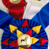FHANA-Rosette-Ribbon-Awards